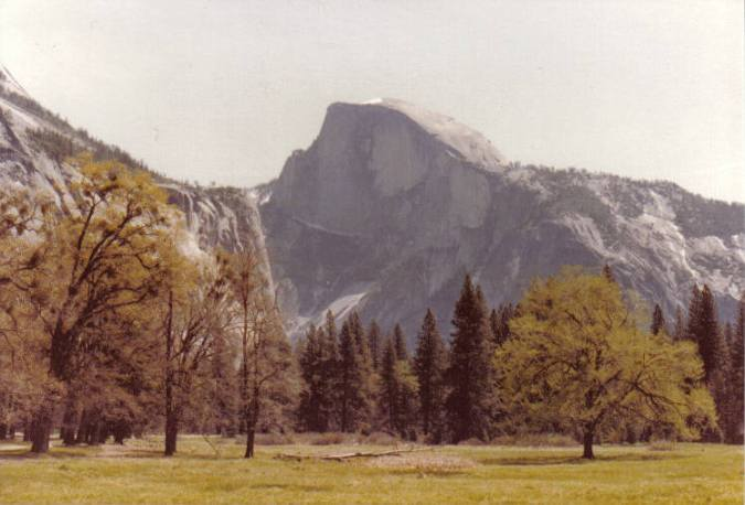 Half Dome - Yosemite, California (copyright 2010 JoshWillTravel)
