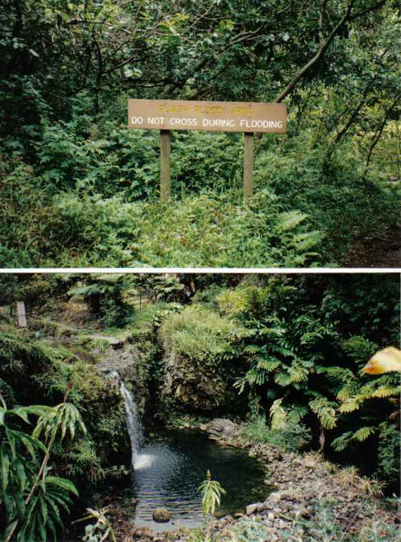 Top: Pipiwai Trail to Waimoku Falls Bottom: Road to Hana (copyright 2010 JoshWillTravel)