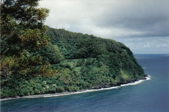 Road to Hana, Maui (copyright 2010 JoshWillTravel)