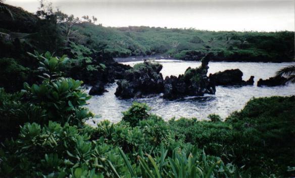 Wai'anapanapa State Park - Maui, Hawaii (copyright 2010 JoshWillTravel)
