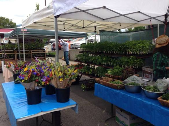 Saturday Farmer's Market in Ashland, Oregon