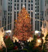 The Rockefeller Center Christmas Tree 2016